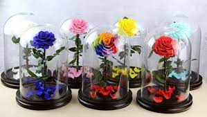 Rose and Glass Dome Decorations Are Perfect For the Perfect Gift